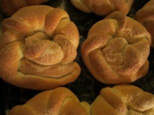 """Caracoles (""""snails"""")"""